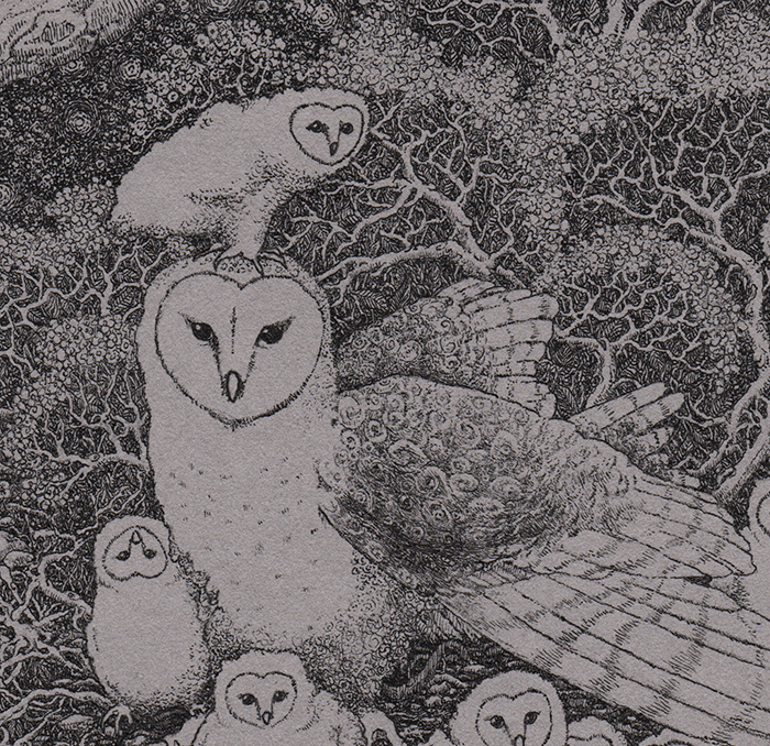 puffy_owls_detail