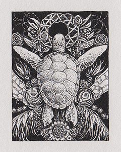 tiny_turtle